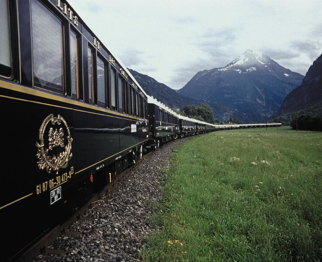 El mundo de las Rosas - Variedades de Rosas - Orient Express